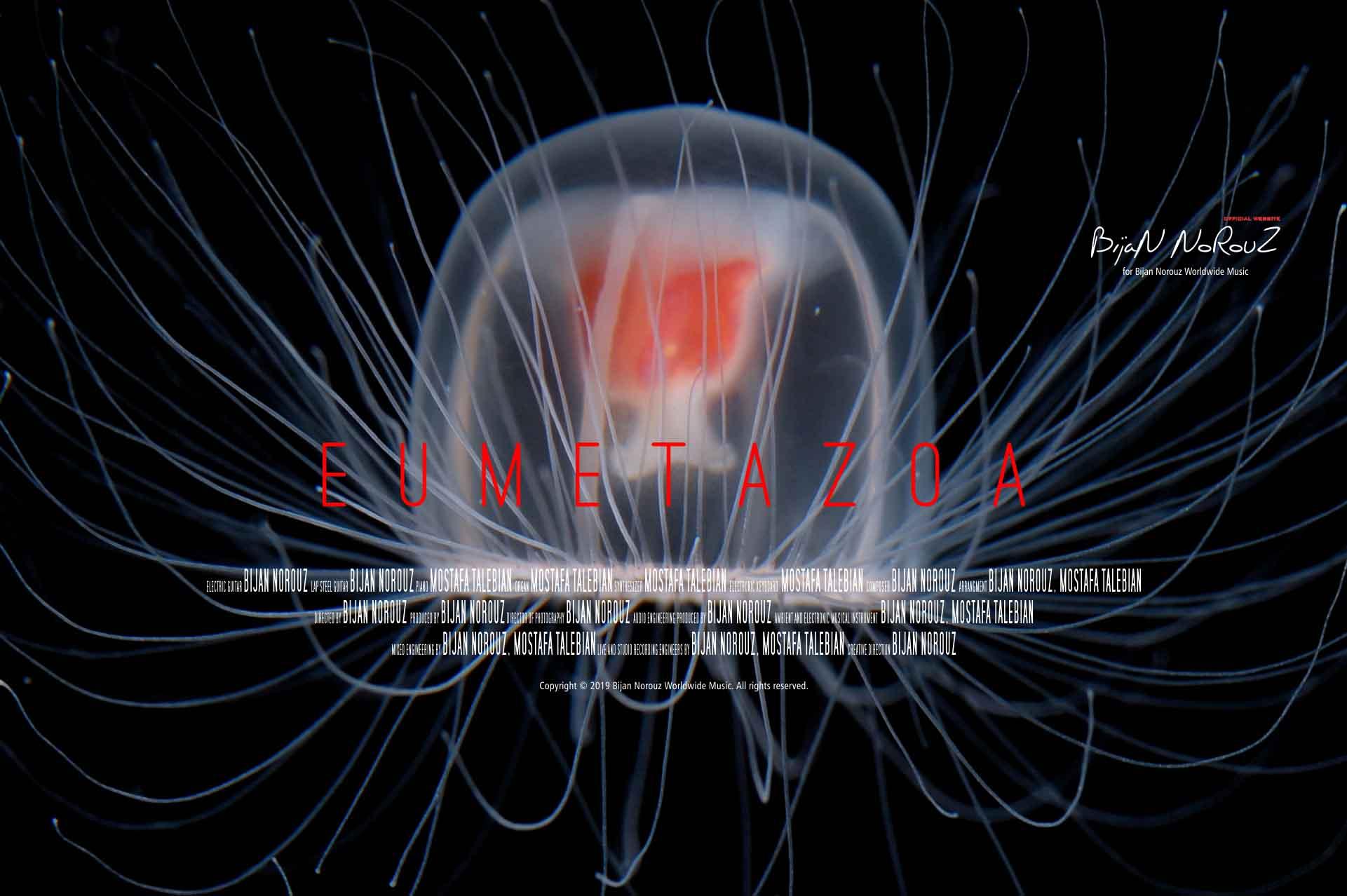 eumetazoa-bijan-norouz